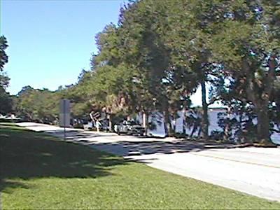 Philippe Park, Safety Harbor, Florida